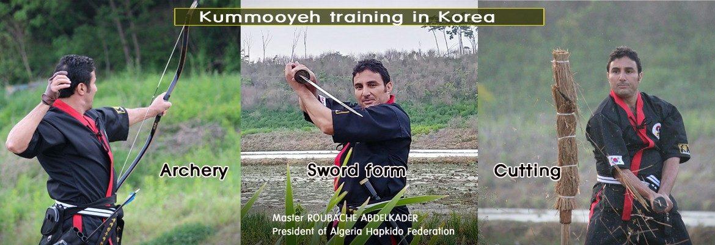 World Kummooyeh Federation – kummooyeh, kumdo, sword